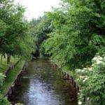 Plis dei fontanili di Capralba